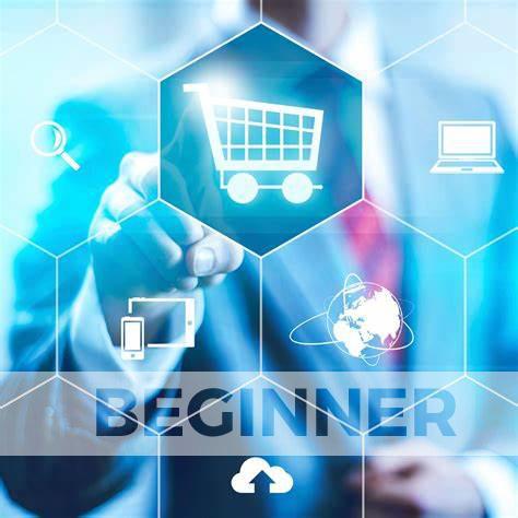 Ecommerce-Paket-Preis-Beginner