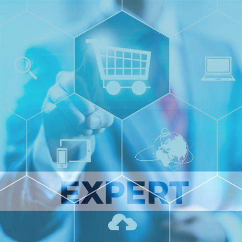 Ecommerce-Paket-Preis-Expert